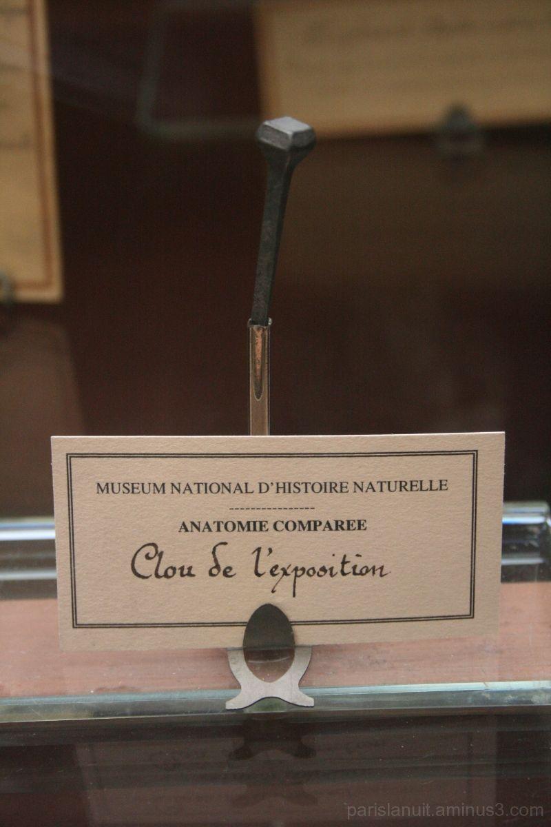 Le clou de l'exposition