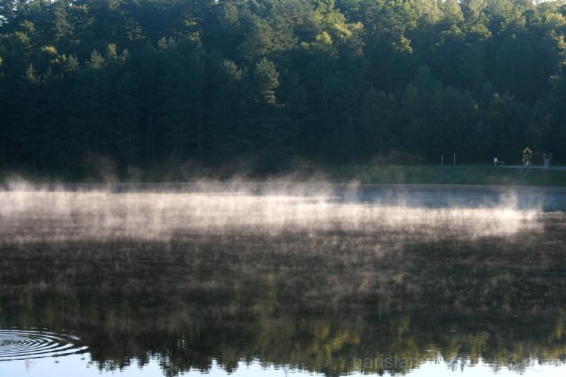 Un lac vivant