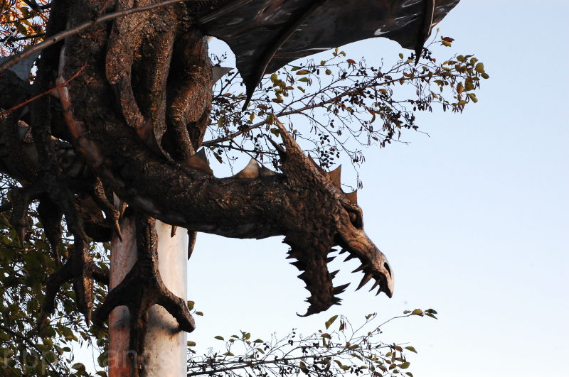 close up of Sneiton dragon