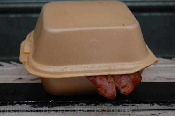 bacon cob sticking its tongue out