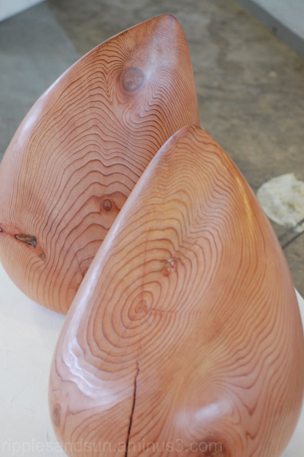 wooden seeds