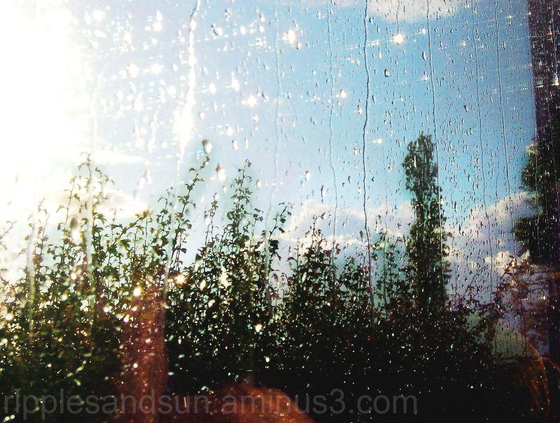come sun, come rain