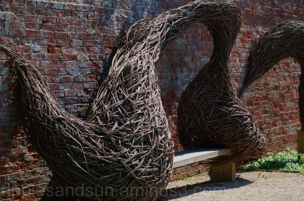 wall and willow
