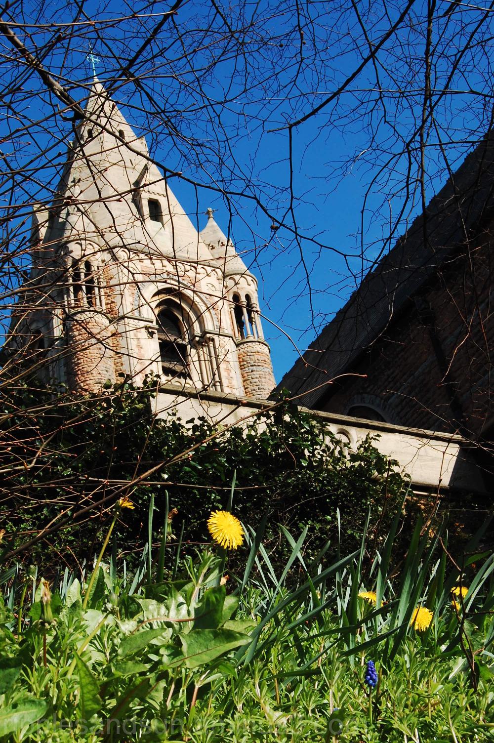 the wild garden of the church