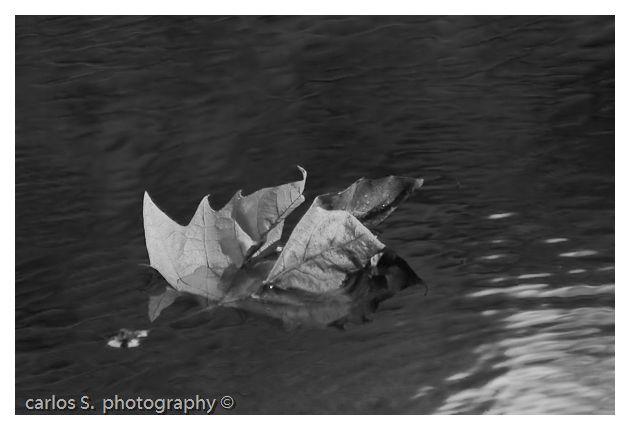 Flutuando
