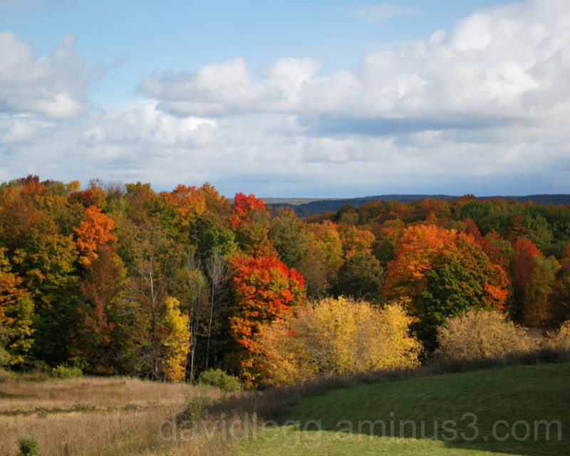 Benzie Fall Vista