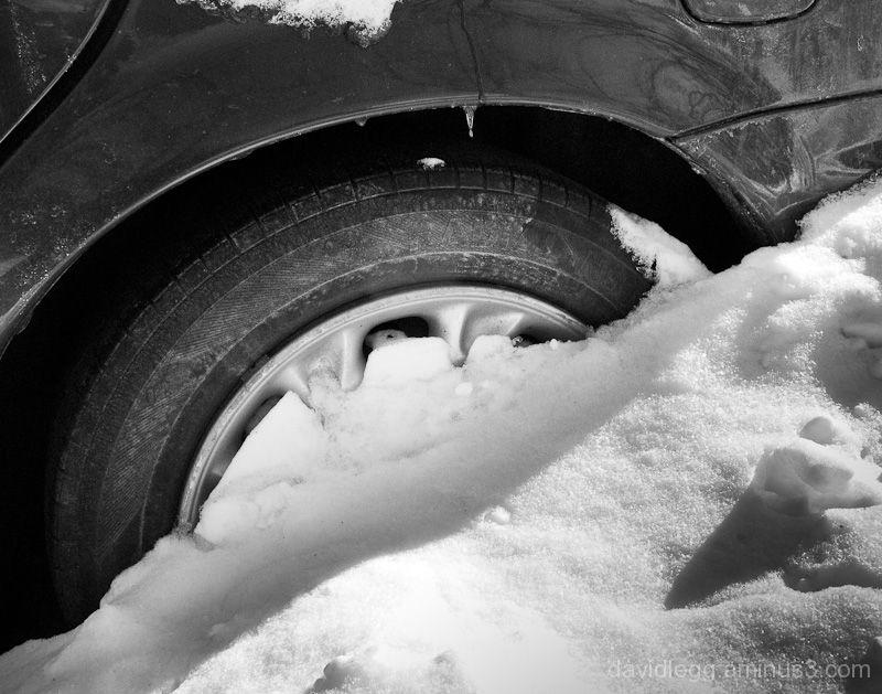 Plowed-in Car
