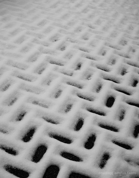 Snow on Bricks