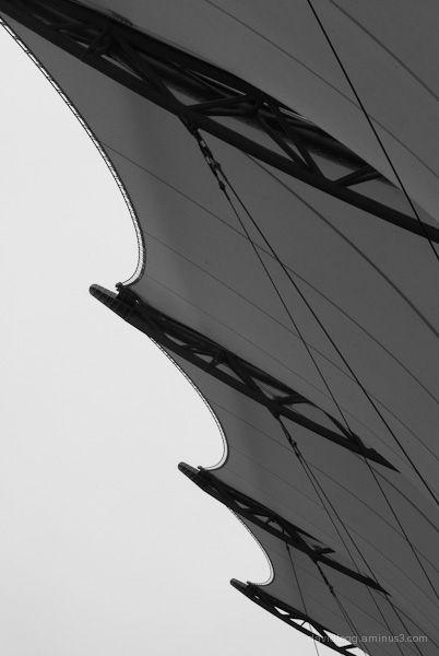 Ribbed Canopy