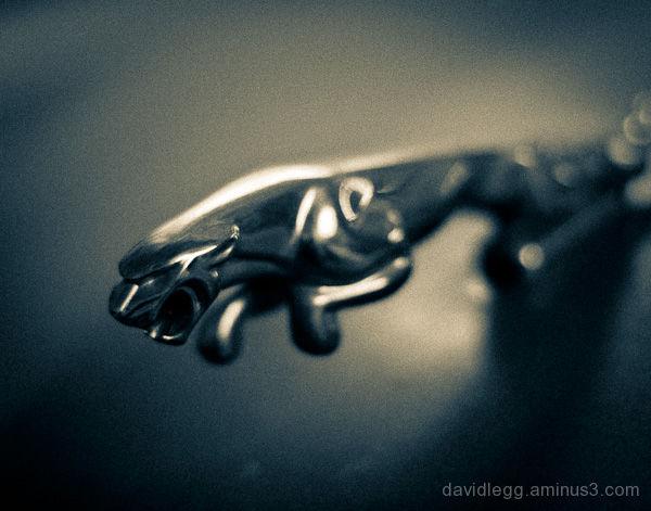 Jaguar Hood Ornament 1