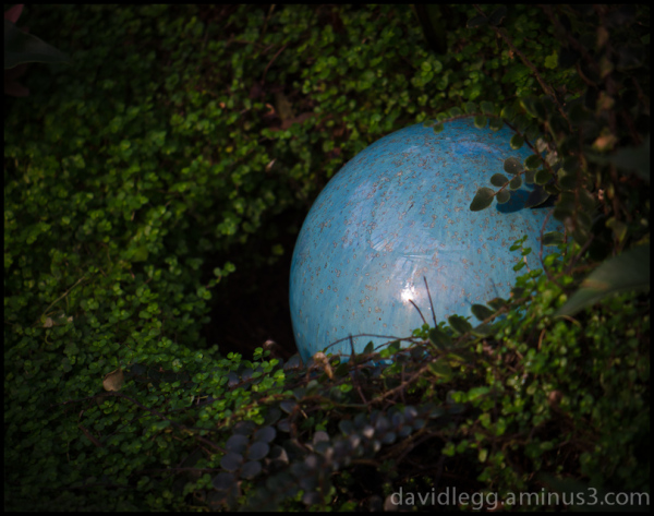 Forest Orb