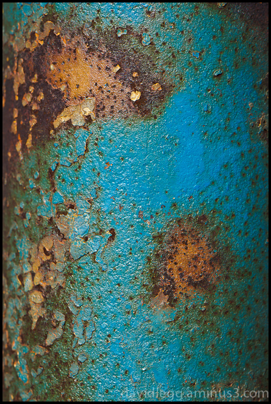 Blue on Rusted Post