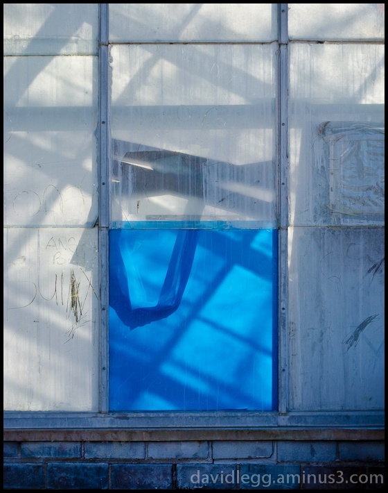 Greenhouse Shadows