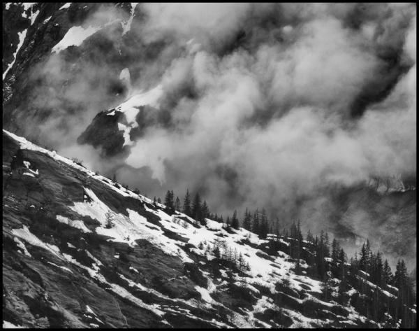 Mountain Mists 2: Treeline