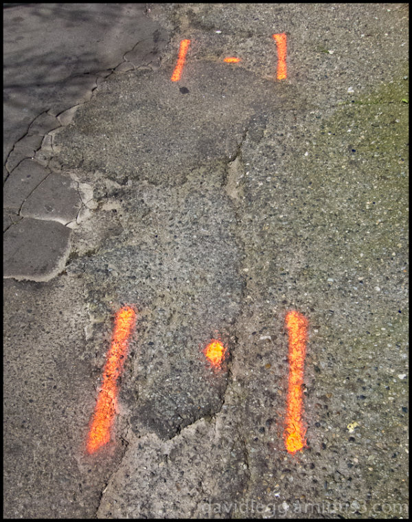 Orange Pavement Markings