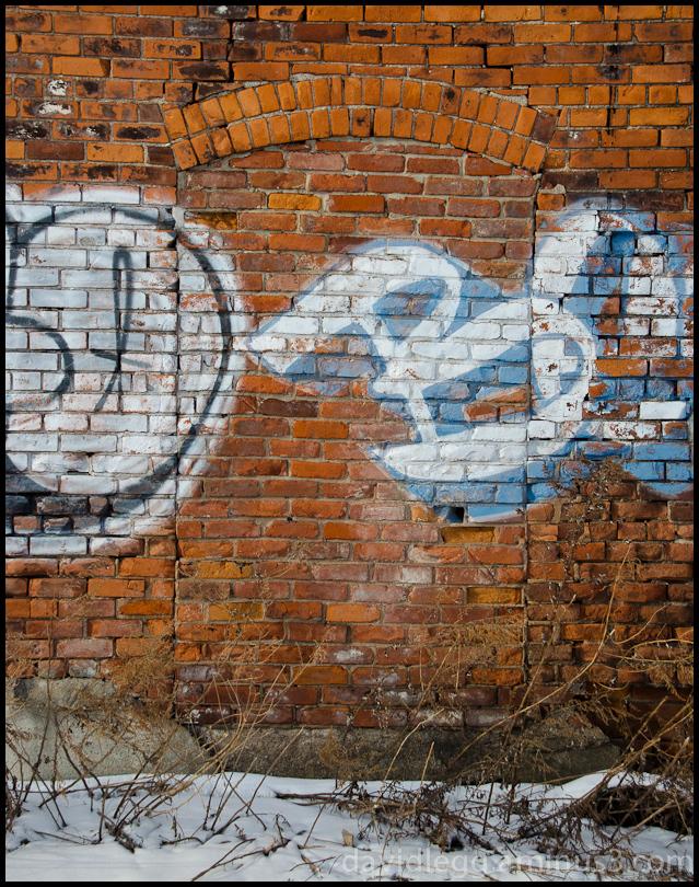 Ghost Door, St. Aubin Street Alley, Detroit