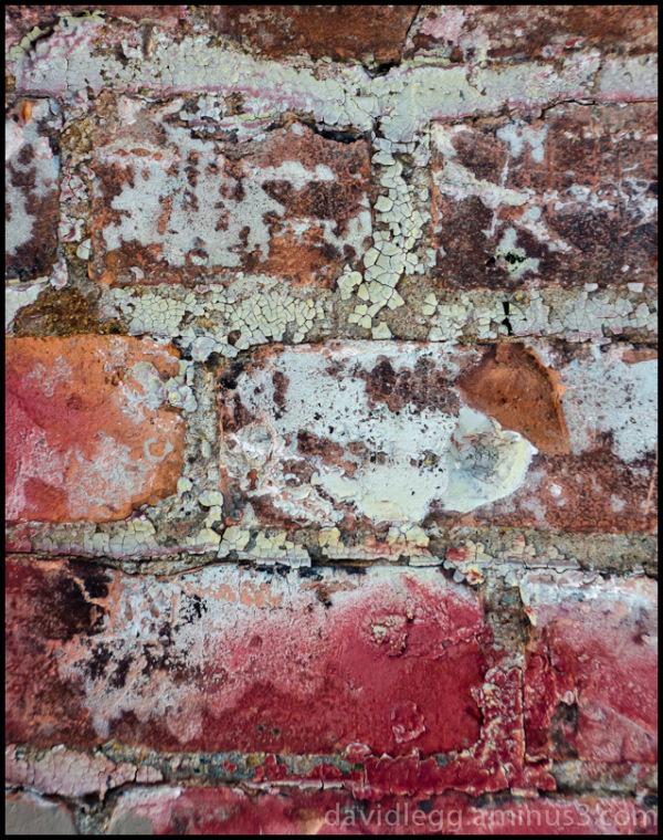 Tagged Bricks