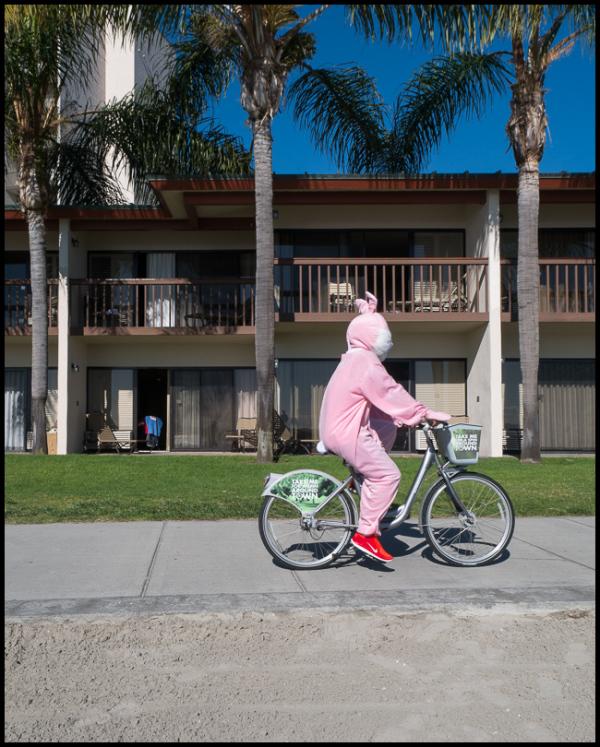 Bunny Ride
