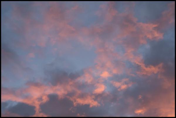 Evening Splendor