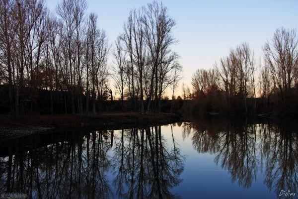 L'étang.