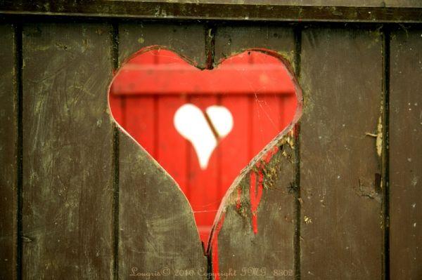 Love is a battlefield.