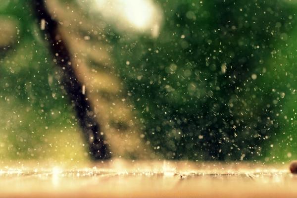 Pluie d'été.