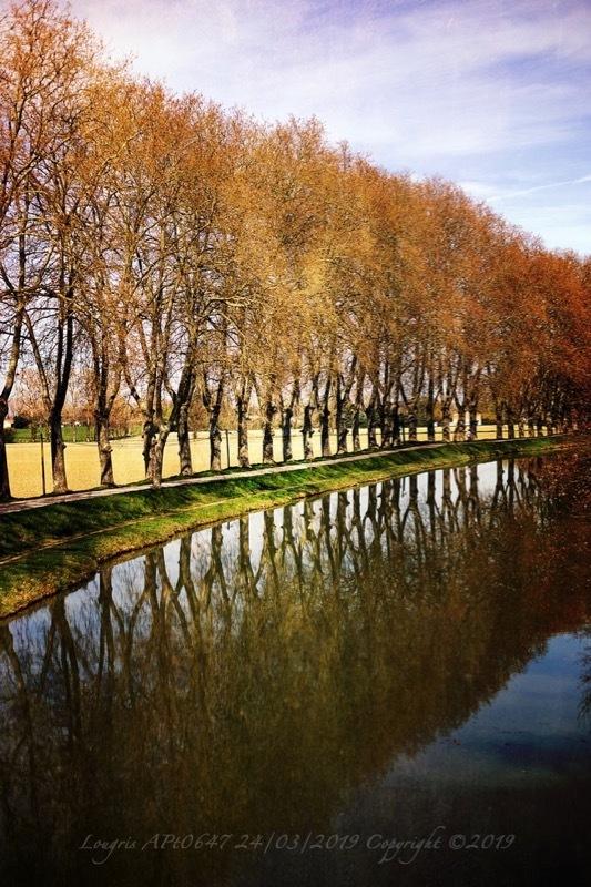 Midi au canal.