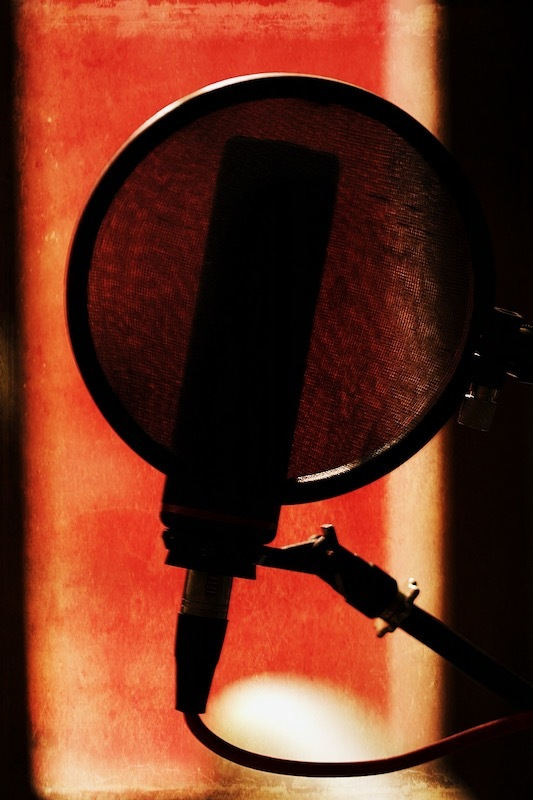 Donner de la voix