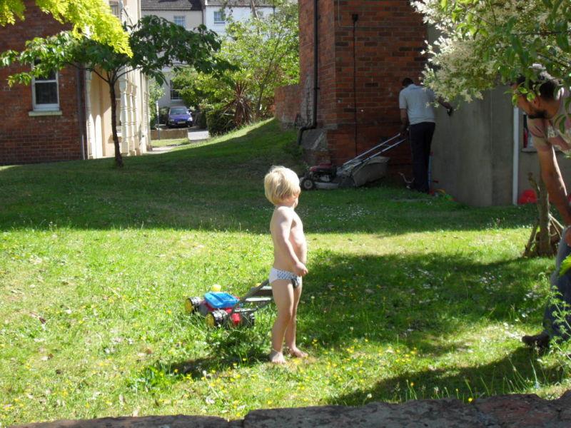 Call tha a lawn mower. this is a lawn mower.