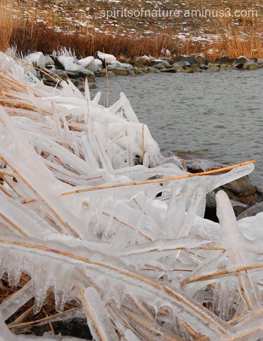 """Hidden in the ice """"Verborgen in het ijs"""""""