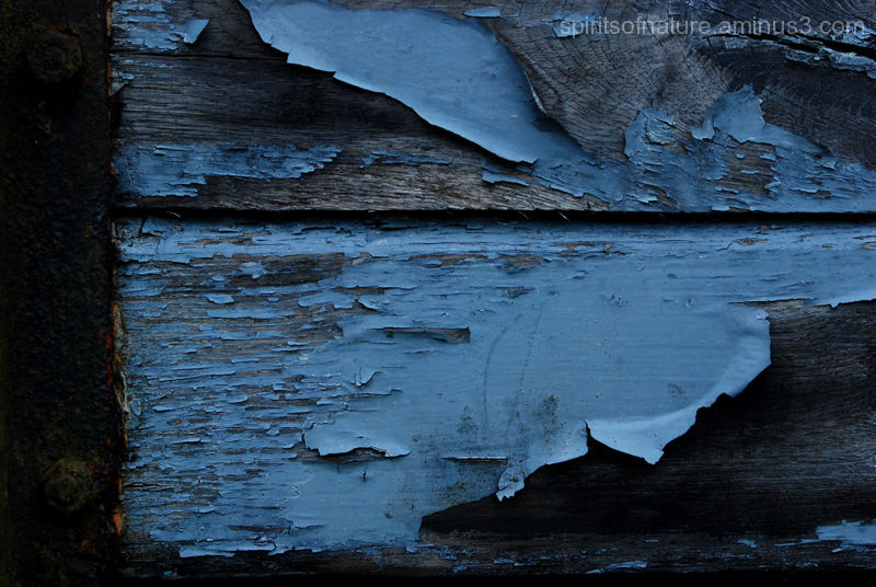 Textures and colors (2)