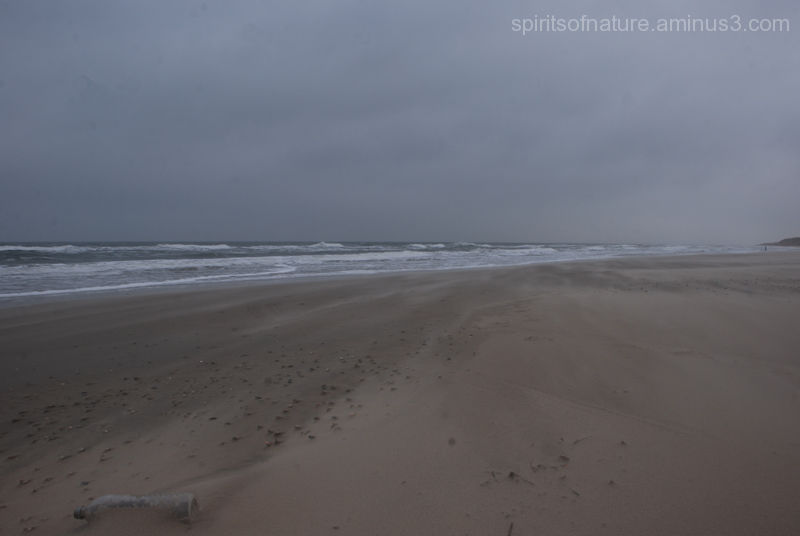 Texel (4)