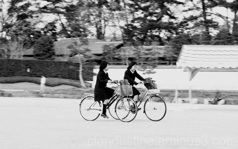 Japanese school girls cycling in a park