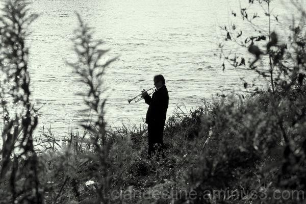 The lone trumpeteer