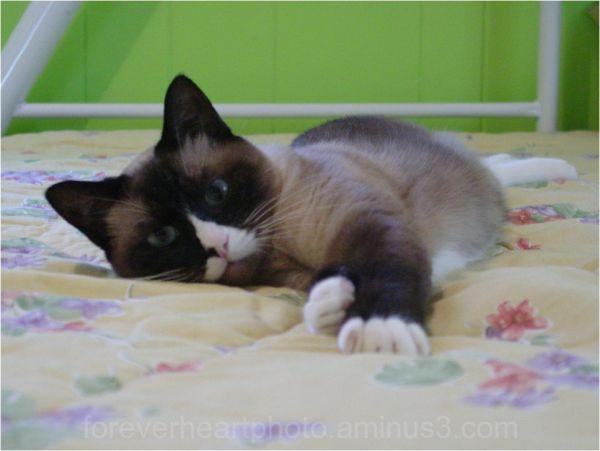 ciera on bed