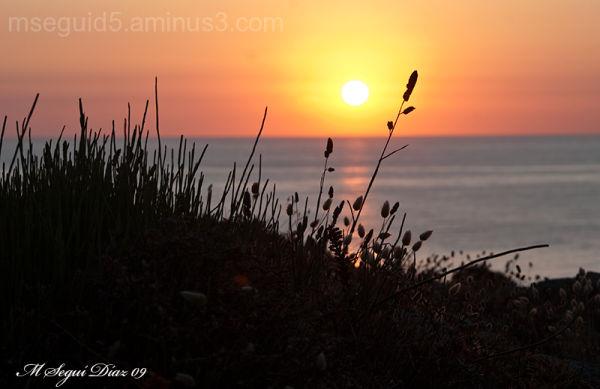 Recorte al amanecer