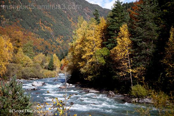 Otoño en Bujaruelo (Pirineo de Huesca)