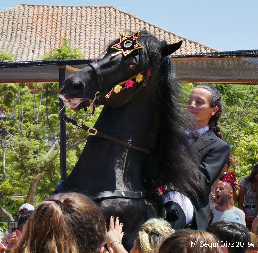 Jaleo Es Castell