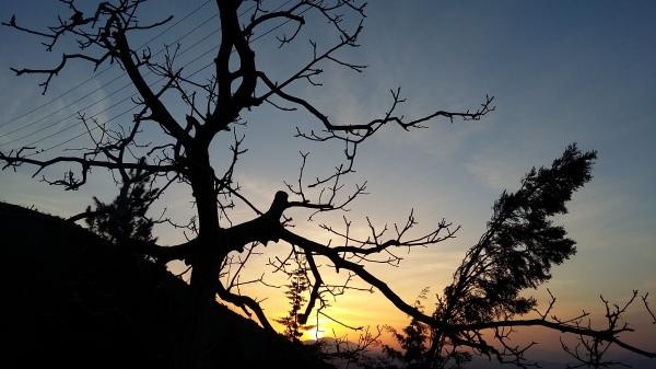 Sunrise-951212-1