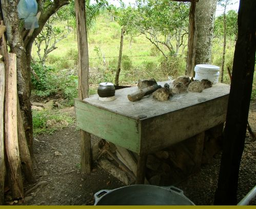 making coconut oil