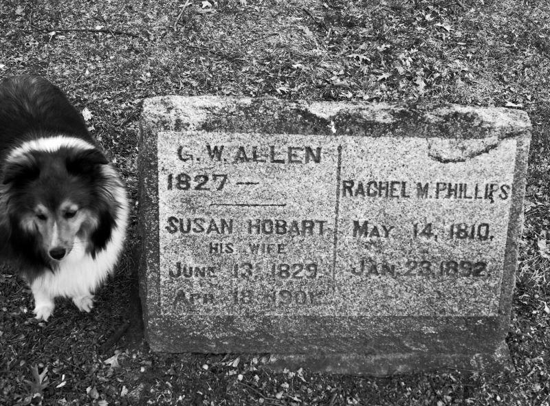 C.W. Allen is still alive!