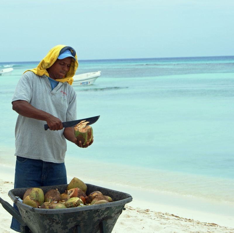 Selling coconuts for living