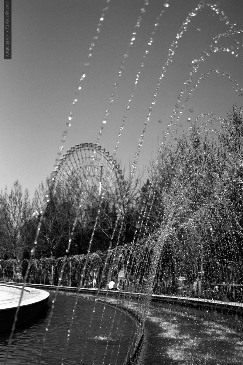 favorite view(Park Mellat_Mashhad_Iran)