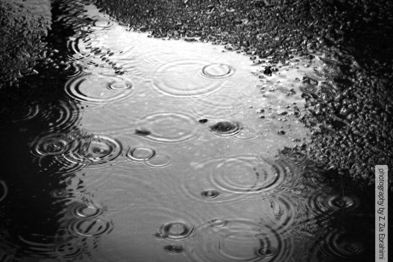 it's raining it's pouring...
