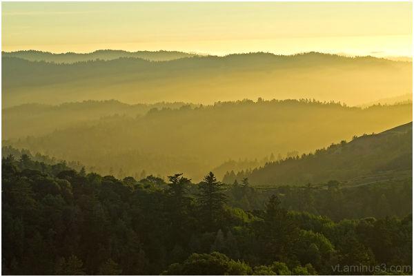 Golden Fog, Russian Ridge, Skyline Blvd. Palo Alto