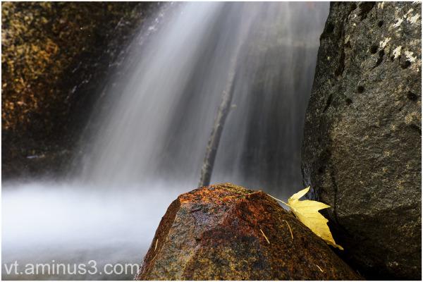 A Fall Abstract, Bridalveil Creek, Yosemite NP, CA
