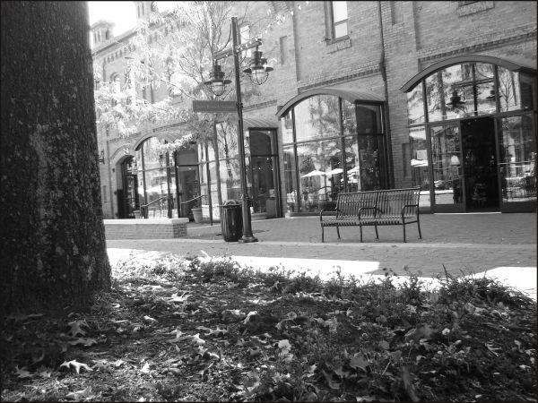 Benched at Brightleaf Square