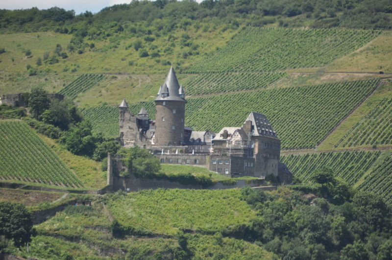 Castle On the Ryne #4