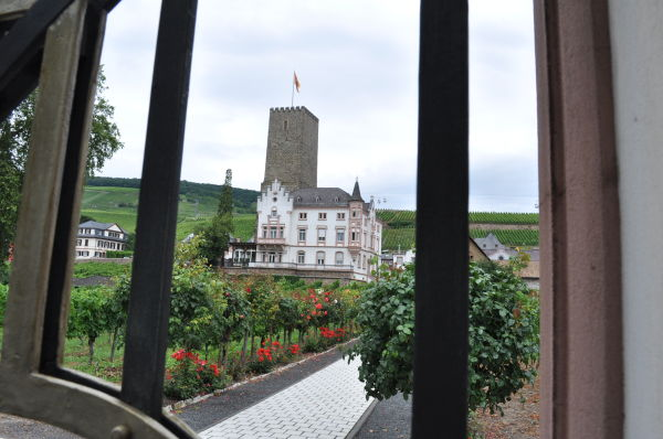 Castle @ the winery