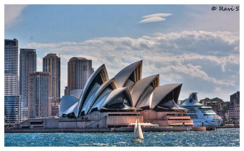 Sail-ient Sydney